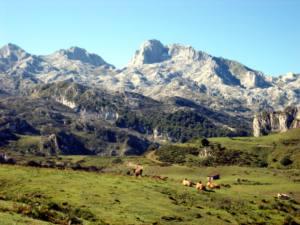 Datos generales del Parque Nacional de Picos de Europa