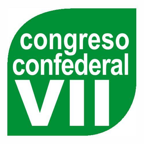 VII Congreso Confederal