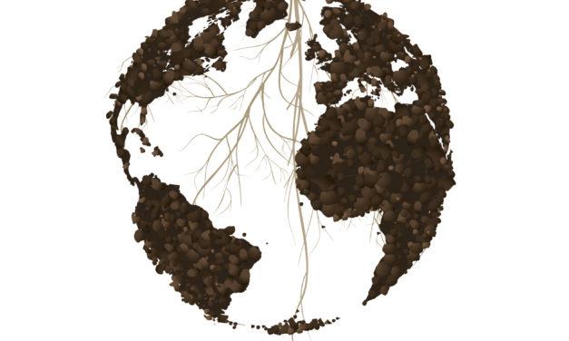 Piden actuaciones urgentes para los suelos contaminados