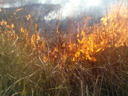 Anulada la quema de rastrojos en Castilla y León