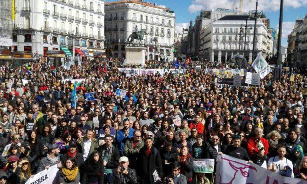 Miles de personas exigen la protección del lobo