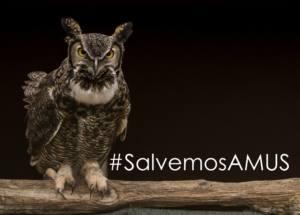 Reclaman a la Junta de Extremadura que evite el cierre de AMUS