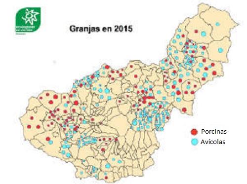 Granjas en Granada, casi una pocilga