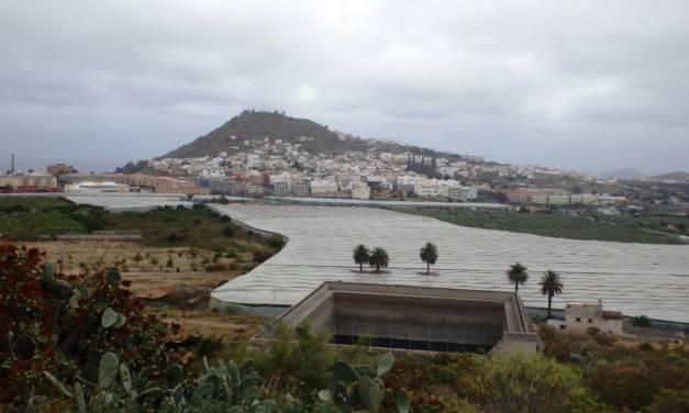 Alegaciones a la instalación de un restaurante-terraza en la vega agrícola