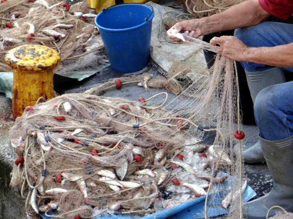 España pasa a depender del pescado procedente de aguas lejanas