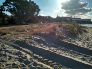 A la porra el sistema dunar de Guadarranque