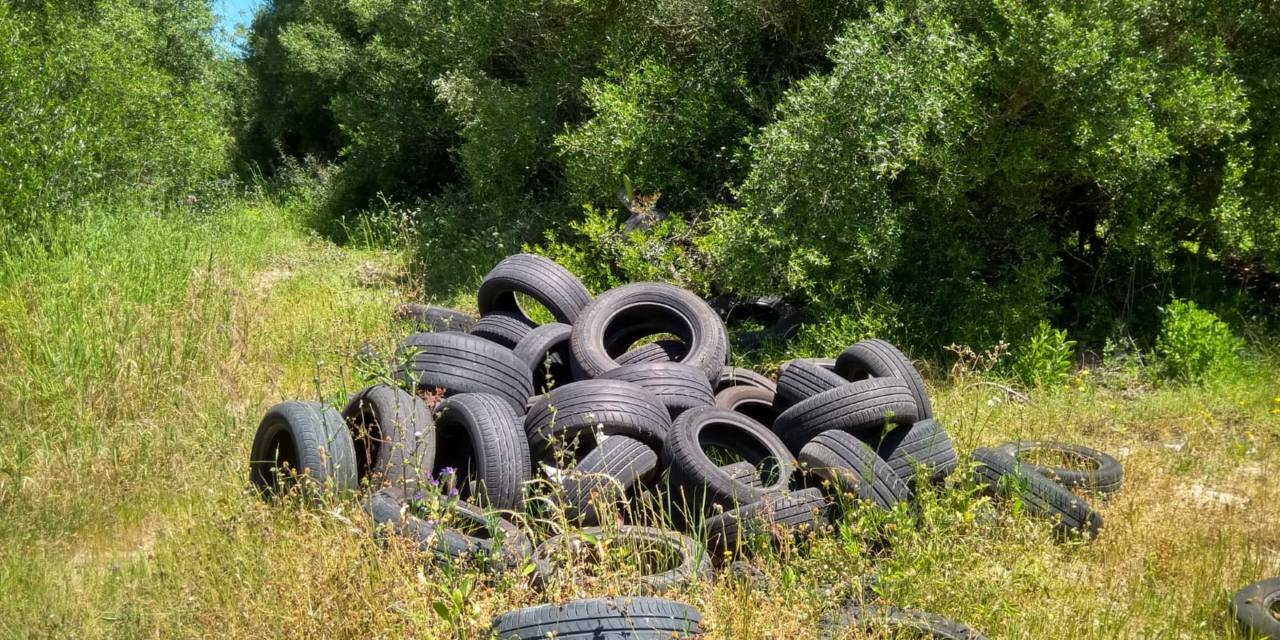 Vertidos urbanos ilegales en el camino viejo de Guadarranque en San Roque
