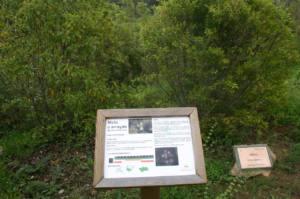 Solicitan que el jardín botánico de El Bosque se denomine Pepe Juárez