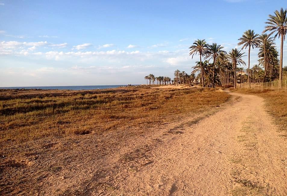 Piden que se desestime la nueva clasificación de la Cañada Real de la Costa de Torrevieja