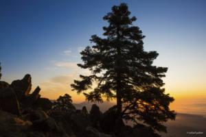 Presentan alegaciones al Parque Nacional Sierra de las Nieves
