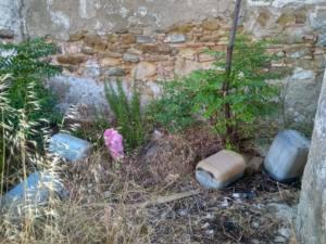 Numerosos vertidos de residuos en pleno corredor fluvial de Madre Vieja