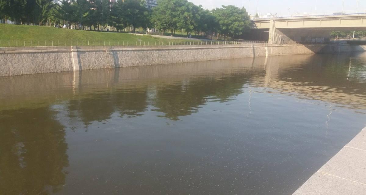 El río Manzanares debe volver a fluir libremente