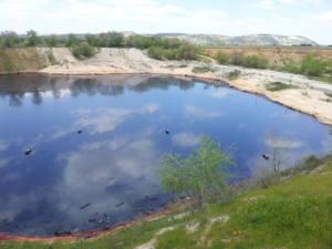 Exigen la limpieza de la laguna del Aceite de Arganda del Rey