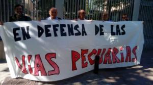 La clasificación de la Cañada Real de Madrid debe proseguir