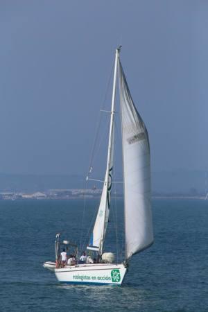 Finaliza la campaña en defensa de la costa: fuera escolleras de la Magdalena