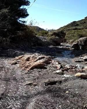 Destrozo ambiental en la rambla del Cañuelo
