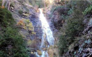 Propuestas para la gestión de las reservas naturales fluviales