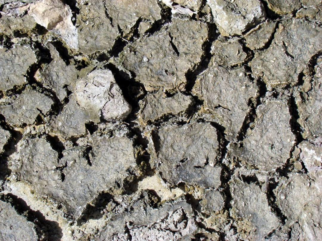 Alertan de los riesgos de sobreexplotar más los acuíferos de Castilla-La Mancha