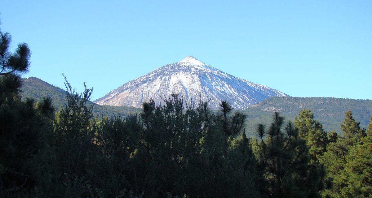 Advierten del grave impacto que actividades como el Bluetrail tienen en el PN del Teide