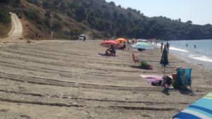 Destrucción de un hábitat de interés comunitario en el Paraje Natural de los Acantilados de Maro