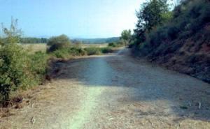 Desbroce salvaje del camino de La Candamia