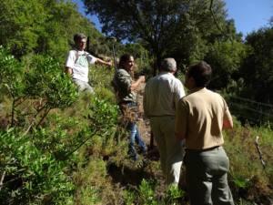 La sociedad Breña del Agua SL impide el deslinde del camino público Benamahoma-Zahara
