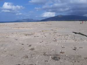 Nuevos actos vandálicos en la laguna del Paraje Natural de Los Lances en Tarifa