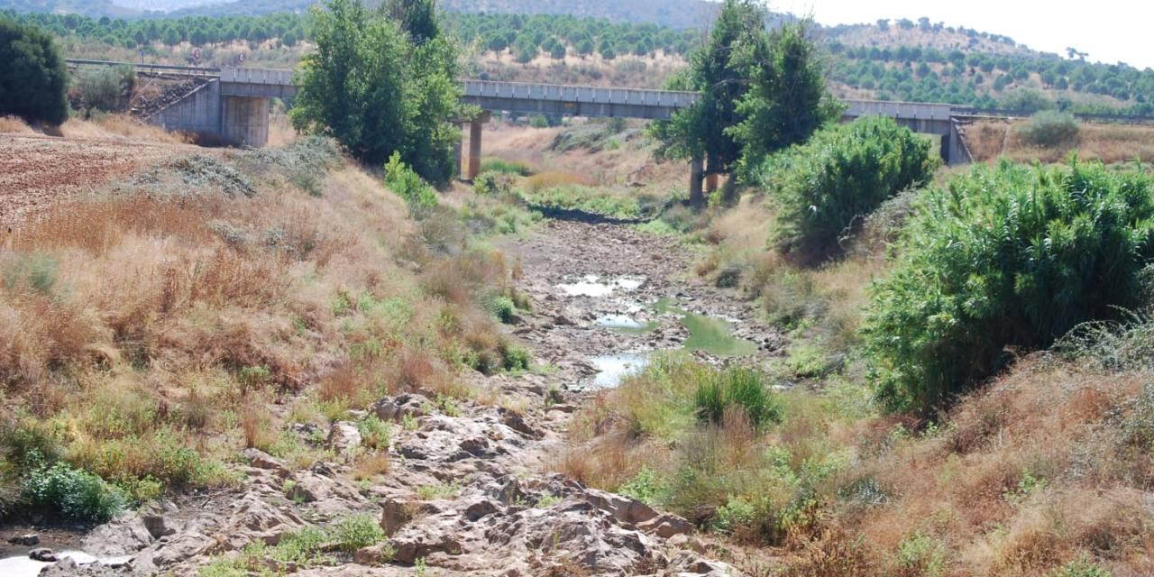 La Confederación Hidrográfica del Guadiana vuelve a no respetar el caudal ecológico del río Matachel