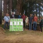 Por la protección del Palmeral del Oasis de Maspalomas