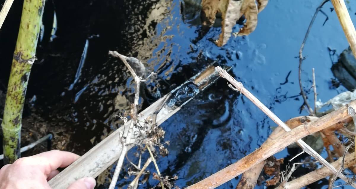 Vertido de hidrocarburos en la confluencia de dos arroyos en El Zabal (La Línea)