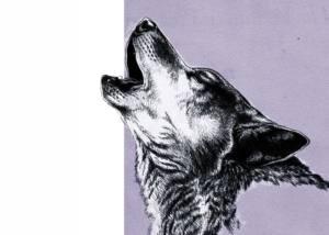 El PP propone prevaricar a cuenta del Lobo