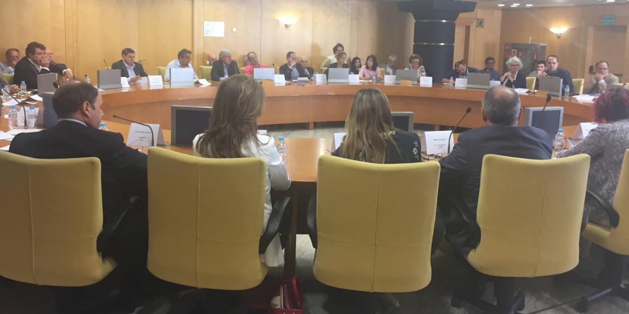Las asociaciones vecinales y ecologistas abandonan la Mesa Madrid Nuevo Norte