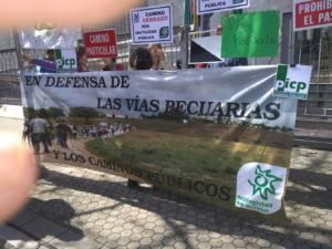 Presunta ocupación ilegal de la Vereda del Camino de Vélez Málaga