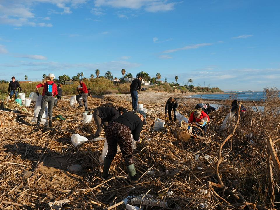 Recogidos más de dos toneladas de residuos en las playas de Aiguadoliva