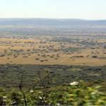 Parques Nacionales corta una ruta de uso público para que se realice una cacería en Cabañeros