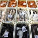Las negociaciones para proteger las especies de aguas profundas finaliza sin el éxito esperado