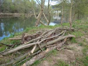 Torrelavega recupera las riberas fluviales… de nuevo