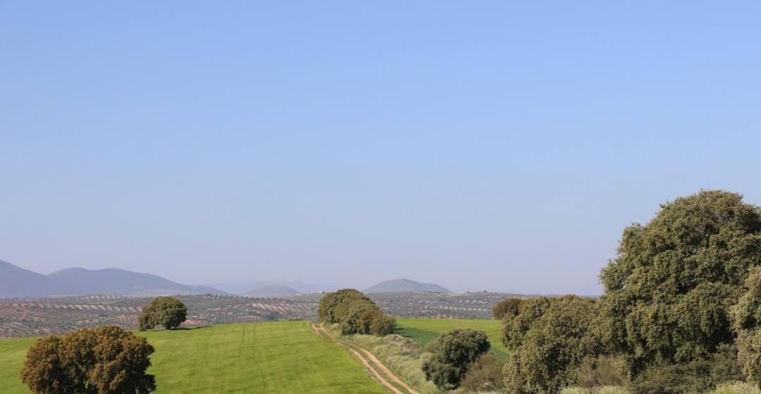 Puy du Fou, un parque temático que amenaza el paisaje de Toledo