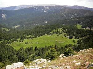 El Gobierno de La Rioja no reconoce los valores naturales de la Sierra de Cebollera