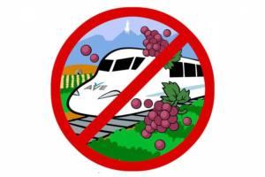 Si al tren, no al AVE en La Rioja