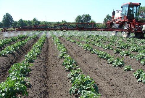 El 83 por ciento de los suelos agrícolas europeos están contaminados con plaguicidas