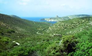 Importante aunque insuficiente ampliación de la Red de Parques Nacionales