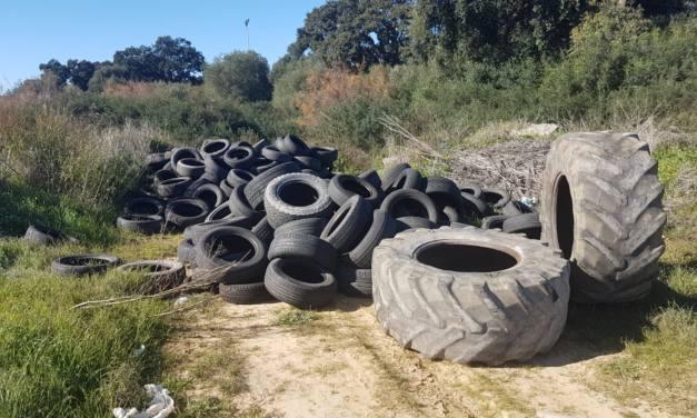 Gran cantidad de neumáticos en el Cerro del Prado en San Roque