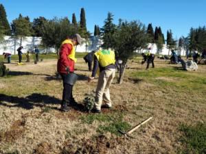 Plantación en Mérida de la campaña Cada extremeñ@, un árbol