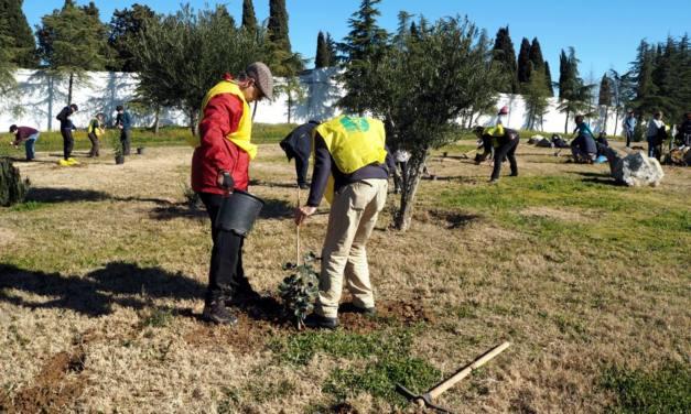 Finalizada la 5ª edición de la campaña Cada extremeñ@, un árbol