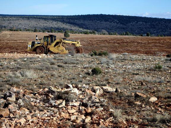 Un nuevo decreto conllevará la perdida de biodiversidad e incremento de la erosión en Castilla y León