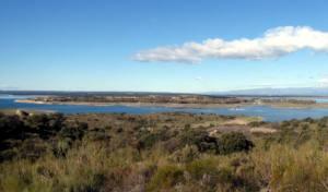 Demoledor informe pericial científico contra el complejo urbanístico Marina Isla de Valdecañas