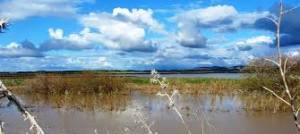 Inician la recuperación de los terrenos públicos ocupados en la laguna de La Janda