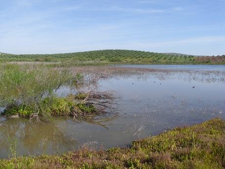 Piden la protección de la laguna de la Quinta
