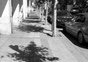 Sombra para nuestras calles y parques